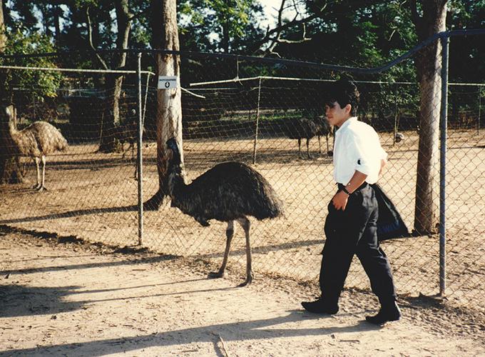follow an emu.