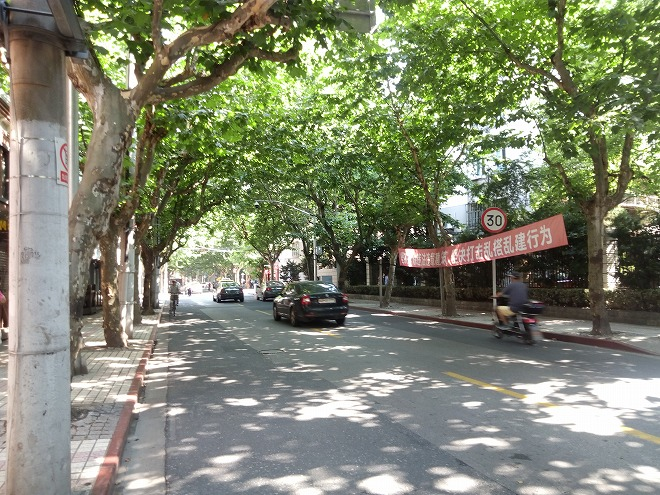 大学の東側の道路。